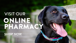 Shop at our Online Pharmacy
